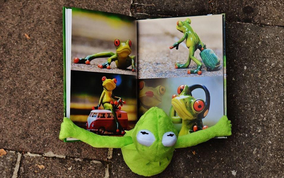 Bilderbuch mit Fröschen